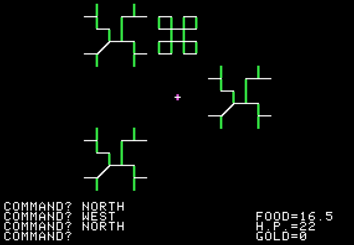 Image from Akalabeth, a computer RPG by Lord British 1979