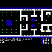 Snap from Ultima I, a computer RPG by Lord British/California Pacific 1981